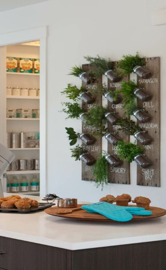 Vertical herb garden from recycled wood and glass jars