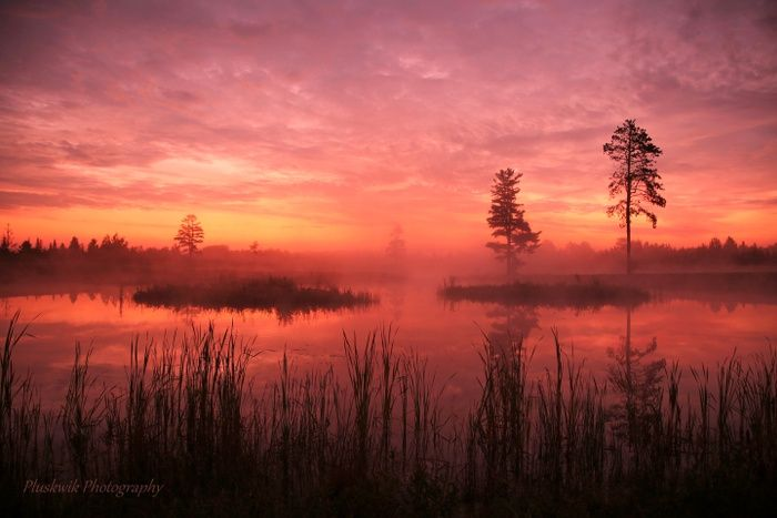 Standing in Awe of Natures Beauty at Sunrise  by Paul Pluskwik on Capture Minnesota // Waiting for the Sun to Rise across the Foggy pond . Mountain Iron, MN