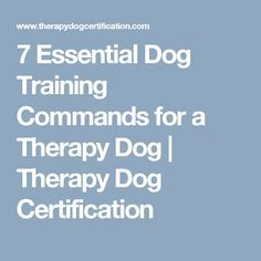 7 Essential Dog Training Commands for a Therapy Dog | Therapy Dog Certification