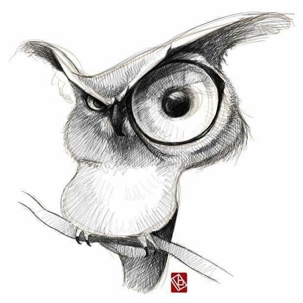 Смешные рисунки карандашом животные