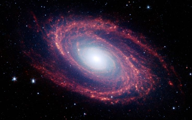 This image of the spiral galaxy M81 was taken by the NASA Spitzer Space Telescope. The spiral galaxy M81, located in the constellation Ursa Major is approximately 12 million light years from Earth. This stunning galaxy is also known as the NGC 3031 or Bode's Galaxy.