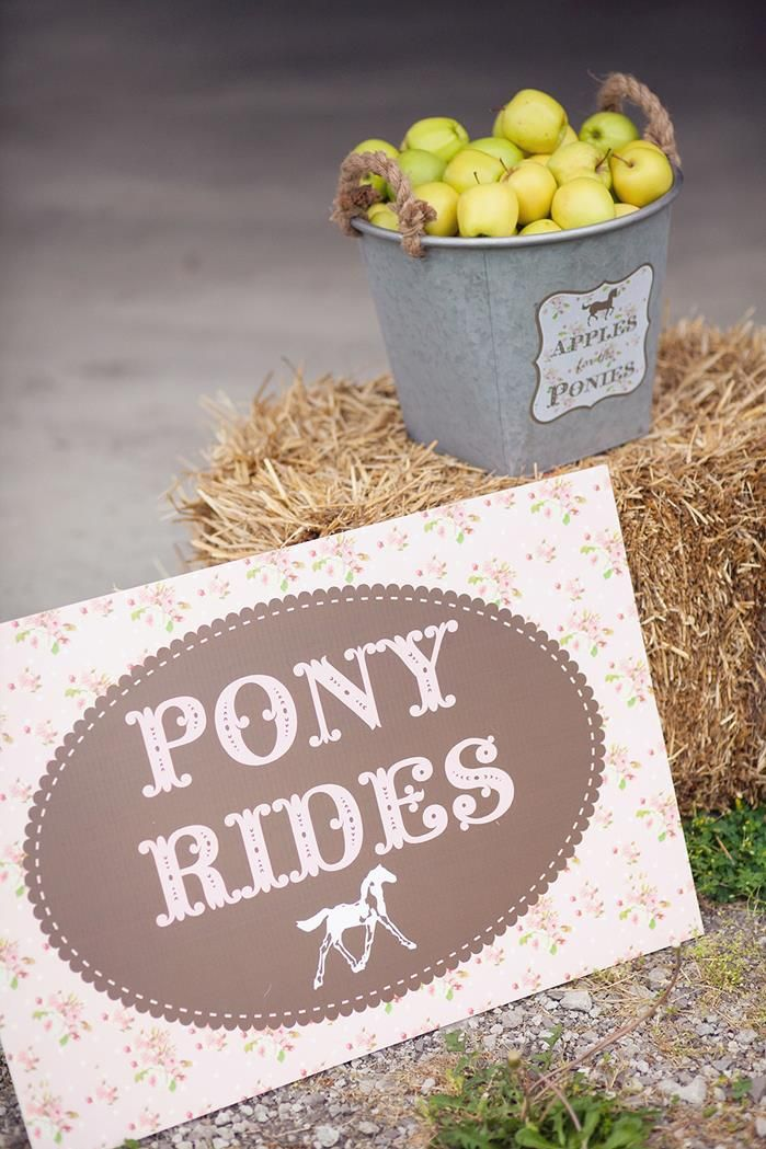Pony Rides sign with bucket of apples for the pony!