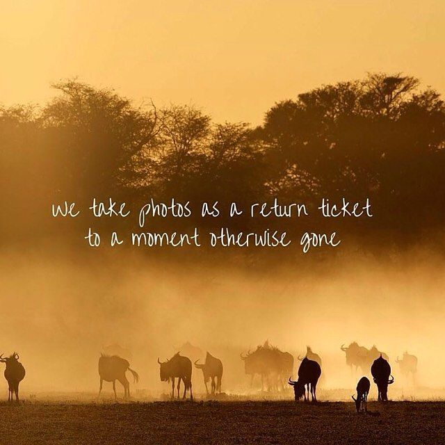 We Take Photos As A Return Ticket To A Moment Otherwise Gone Love New African Quotes