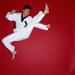 Taekwondo Moves