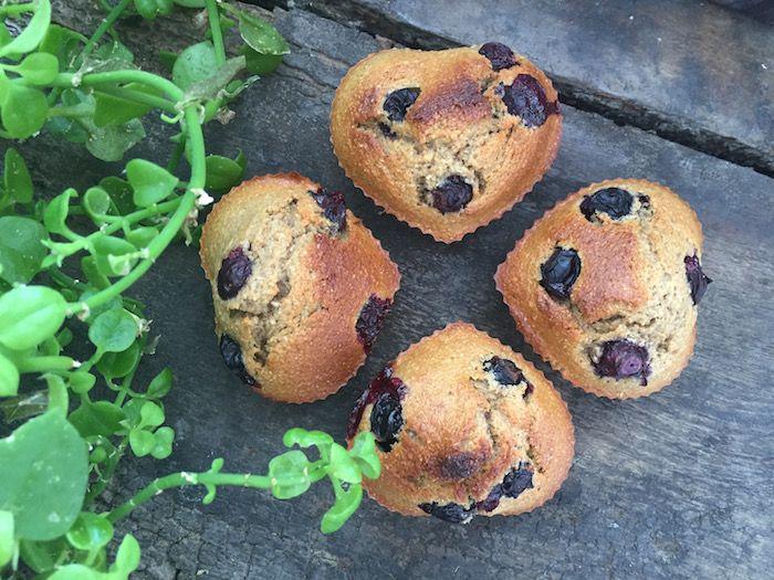 Muffins de Arándanos y Linaza