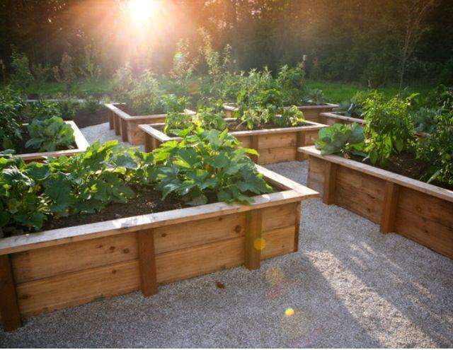 Garden boxes Vegetable garden ideas Pinterest