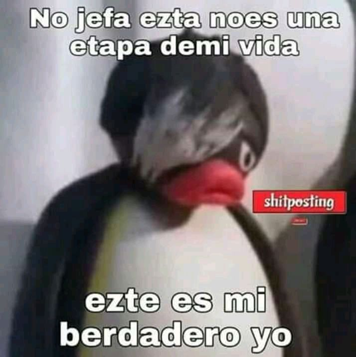 O1 Memes De Pingu Memes Memes Divertidos Memes
