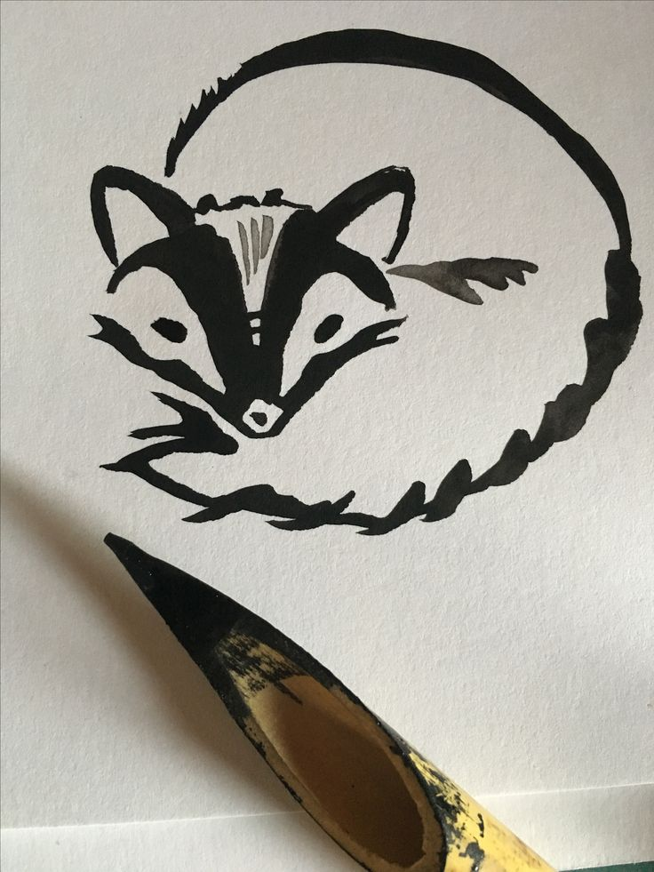 Ink and bamboo pen. By M.Valeria nov. 2017  View on tumblr https://mayapula.tumblr.com/post/168004497863/a-tiny-raccoon-pup-and-the-bamboo-pen-that-brought