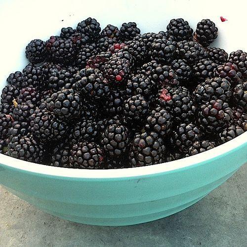 Homemade Seedless Blackberry Jam
