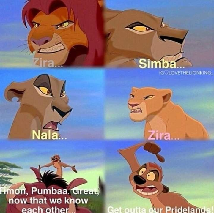 Pin By Samantha Weekly On Disney Lover Lion King Funny Lion King Pictures Disney Lion King