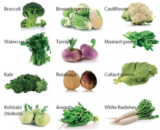 Cruciferous Vegetables (destroy fat storing estrogen)   Cruciferous vegetables contain a naturally occurring ingredient called 3-Diindolylmethane or DIM for short. DIM is strongly anti-estrogenic, so it helps block xenoestrogens (sometimes called obsesogens)...   ...Otherwise known as BAD estrogen that accumulates inside your body from constant exposure to environmental toxins.    This hormone is the reason why women are storing more and more belly fat in today's day and age - and it's also…