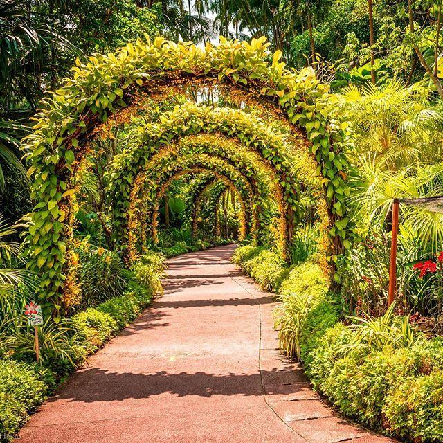 Orchard Road To Botanic Gardens Singapore