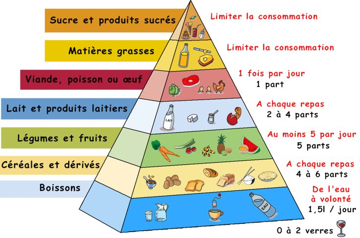 French food pyramid