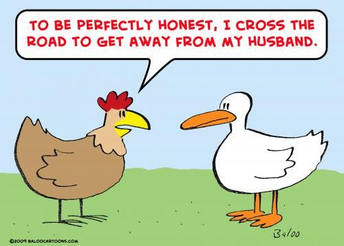 Best Chicken Jokes: Best 25+ Chicken Humor Ideas On Pinterest