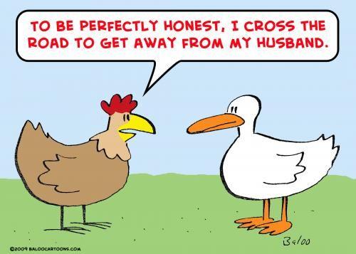 Chicken humor