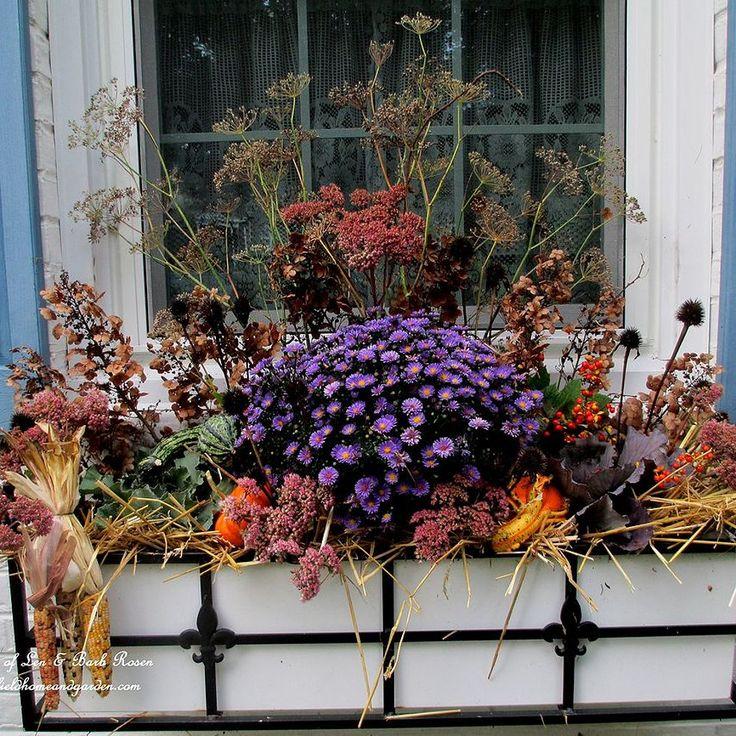 Fall Window Box: 1000+ Ideas About Fall Window Boxes On Pinterest