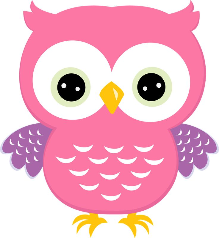 91 Best Coruja Images On Pinterest Owls Clip Art And