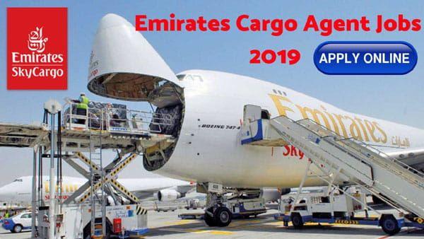 Emirates Cargo Agent Vacancy For Freshers Emirates Airline Airline Jobs Emirates