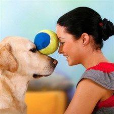 7 cose da non fare col tuo cane         Bisogna pensare come un cane per renderlo felice (ed esserlo pure noi). Come? Ce lo insegna un esperto cinofilo, Angelo Vaira, mettendoci in guardia sugli errori ricorrenti. Perché dietro a un cucciolo educato c'è un padrone intelligente  .News dal Mondo FASHION.. Per i vostri acquisti, visitate www.dadeshoes.com, scarpe e accessori firmati ai prezzi più bassi del web! LIU JO, CESARE P, VIC MATIE', GABS, D'ACQUASPARTA, LORIBLU, DOUC