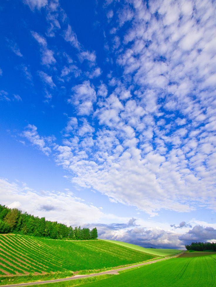 空と大地の果てへ・・・