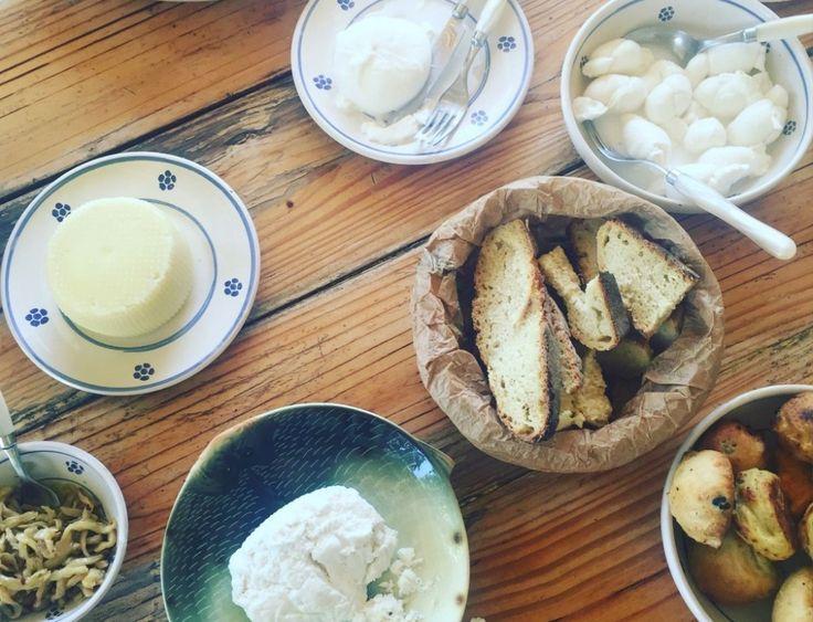 Where to Eat in Puglia
