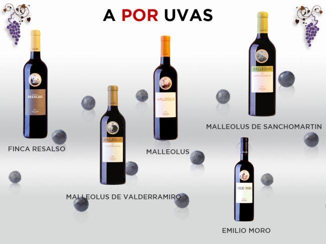 EMILIO MORO INVITA A LOS AMANTES DEL VINO A BRINDAR CON SUS TINTOS ESTA NOCHEVIEJA https://www.vinetur.com/posts/1971-emilio-moro-invita-a-los-amantes-del-vino-a-brindar-con-sus-tintos-esta-nochevieja.html