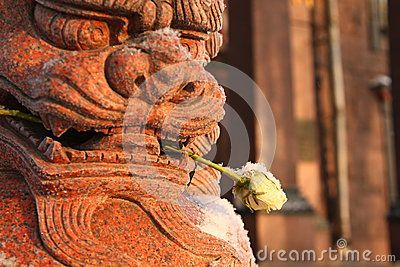 Granite sculpture with frozen white rose in his mouth in the courtyard of the Datsan Gunzechoinei. St. Petersburg, Russia