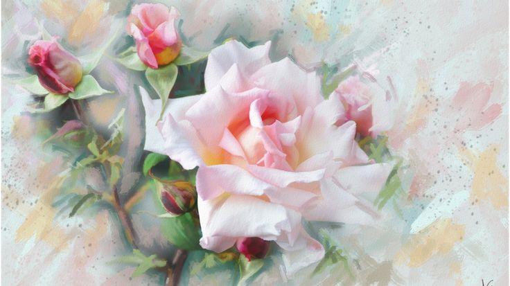 Скачать обои графика, цветы, Роза, нежно, обои от lolita777, живопись, пастельные тона, цветок, розовая, раздел живопись в разрешении 1366x768