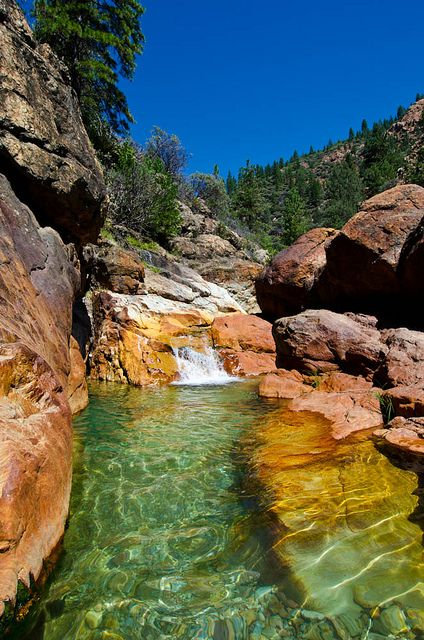 Little Backbone Creek, Whiskeytown–Shasta–Trinity National Recreation Area, near Redding, California by Ron Kroetz