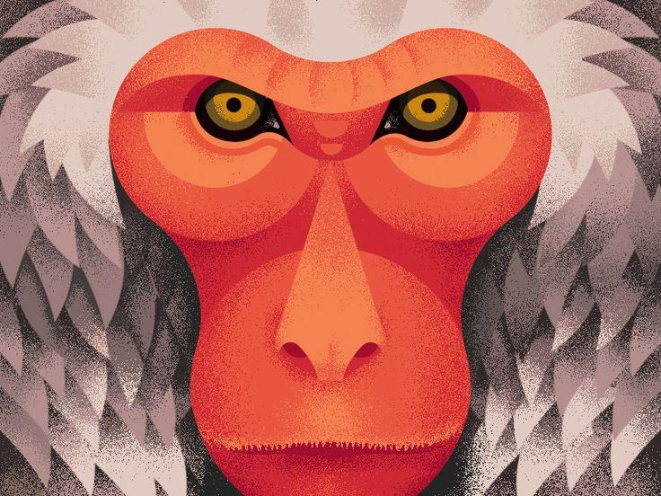 Japanese monkey by Anano Miminoshvili #Design Popular #Dribbble #shots