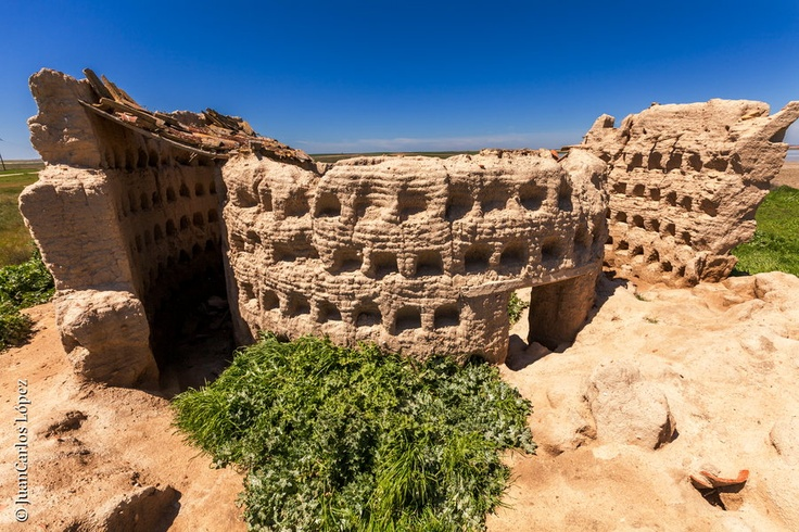 These are the ruins of an old pigeon house (palomar) built in adobe in Otero de Sariegos, an abandoned village near Villafafila, Zamora,  #CastillayLeon #Spain