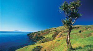 The Coromandel Peninsula is a beach lovers paradise