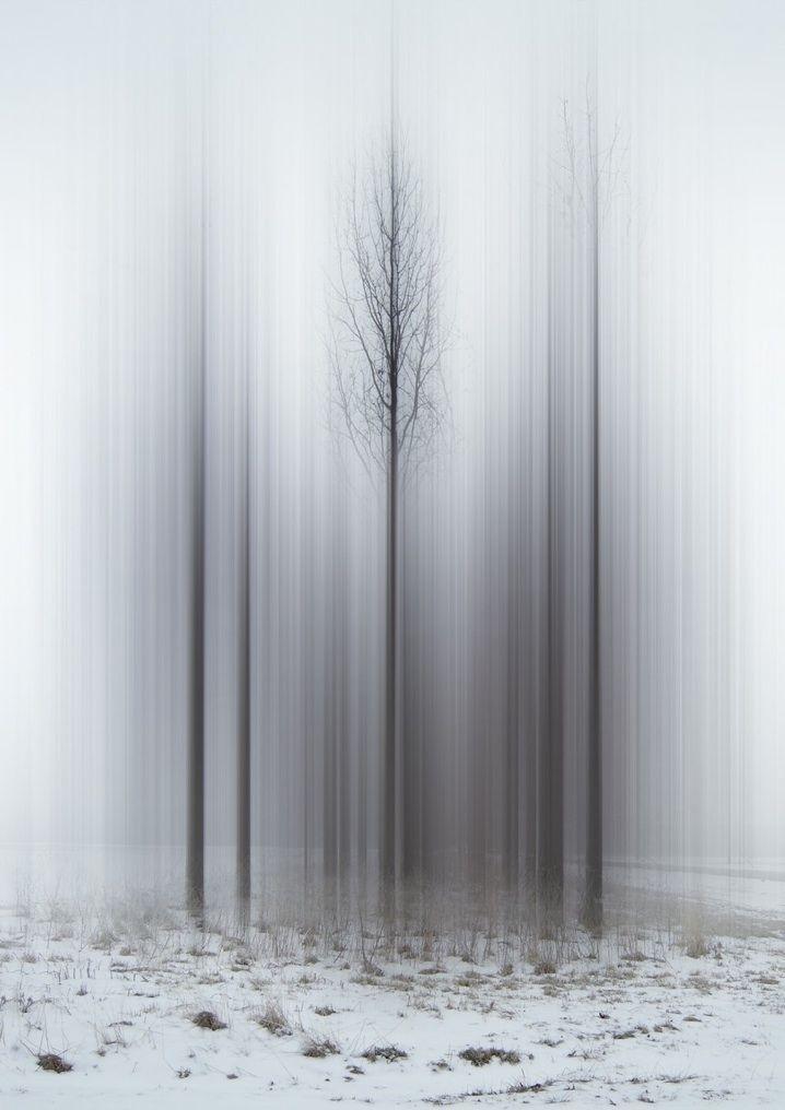 Digitally Altered Trees Resemble Ghostly Spirits | Ellen Jantzen | http://www.ellenjantzen.com/