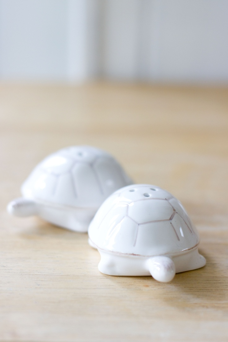 Turtle Salt And Pepper Set