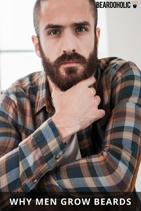 Why men are hairy