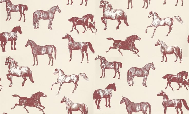 Collette (760-64) - Sandberg Wallpapers - A stunning horse motif design – with different breeds of horse drawn in a naturalistic etching style.   Available in 4 colourways – shown in the raspberry pink on pale mushroom cream background. Please ask for a sample for true colour match.