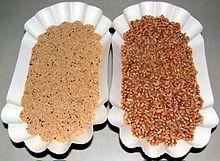 Amaranth grain - Wikipedia, the free encyclopedia
