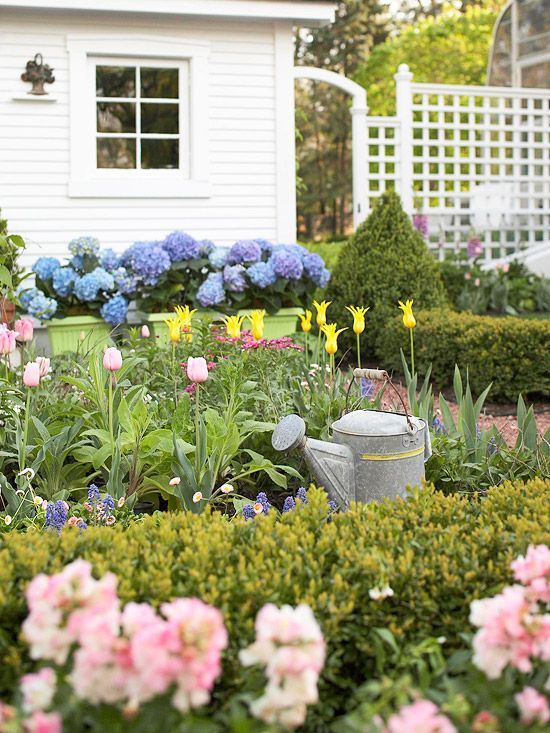 A welcome burst of post-winter color comes courtesy of early-season flowers.