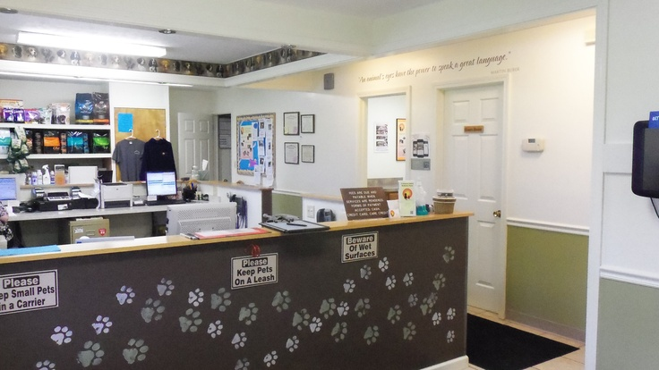 Country Doctor Veterinary Clinic - Veterinarian In Jefferson, OH USA :: Home