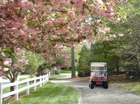 Golf Cart Community