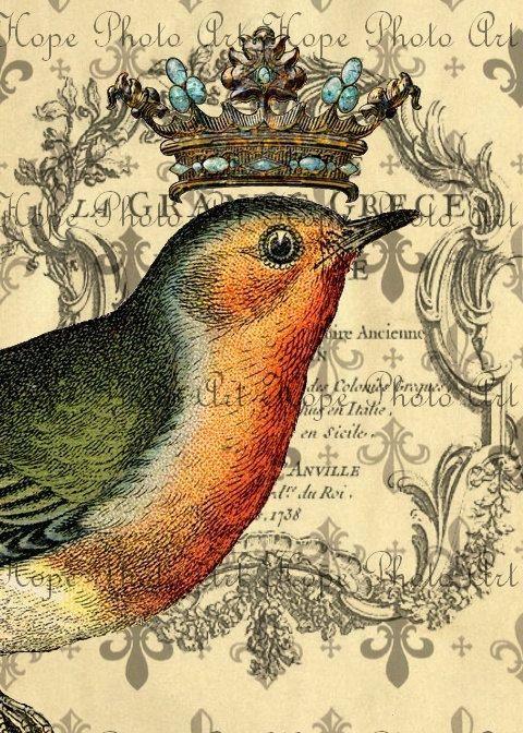 Crowned Bird Transfer