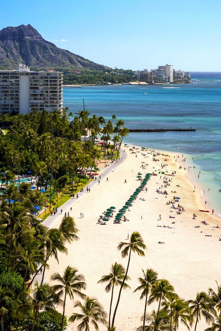 Waikiki Beach is one of the most famous stretches of sand on the planet, up there with Ipanema and Bondi. Come here to soak up the sun, swim, pilot an outrigger canoe, sail a boat, or snorkel.