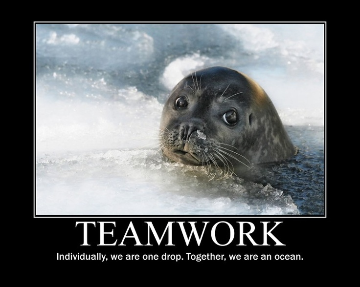 Funny Motivational Memes For Work : Best images about team on pinterest sports theme