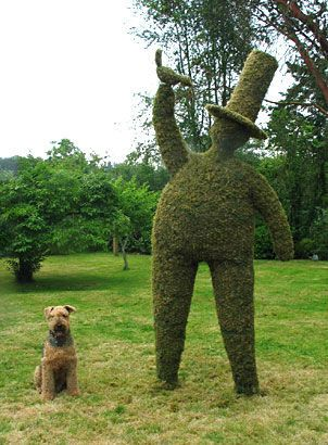 My friend, Duane Hoffmann's topiary man! Don't you love it? #topiary #garden #whimsy