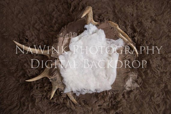 Rustic Real Antler Nest Newborn Digital Backdrop// Baby boy