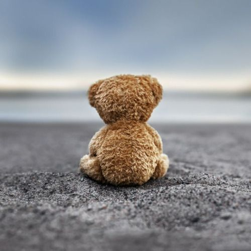maya47000:  Teddy blue by Marko Mastosaari