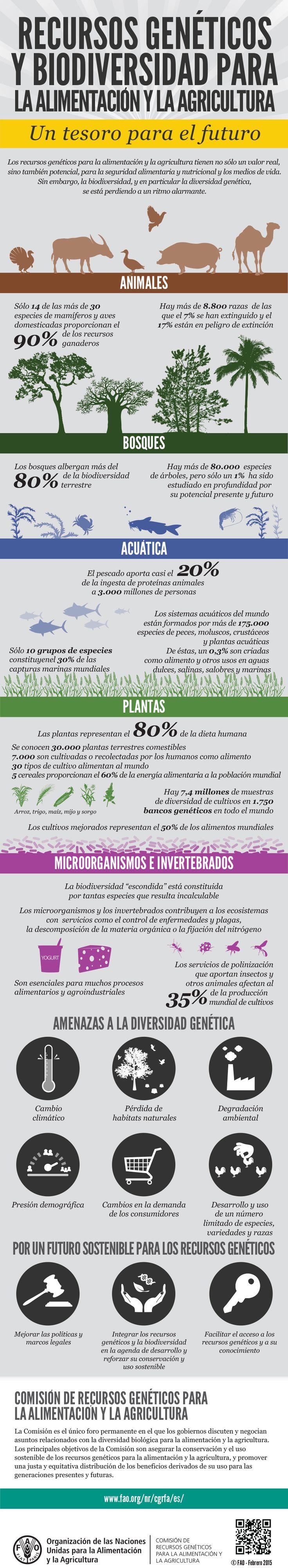 Biodiversidad para la seguridad alimentaria y la nutrición: 30 años de la Comisión de Recursos Genéticos para la Alimentación y la Agricultura. Los recursos genéticos para la alimentación y la agricultura tienen no sólo un valor real, sino también potencial, para la seguridad alimentaria y nutricional y los medios de vida.