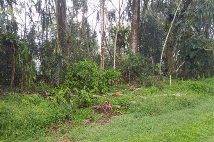 Nehu St , Hawaiian Shores Recreational Estates  Hawaii Information Service Property Search