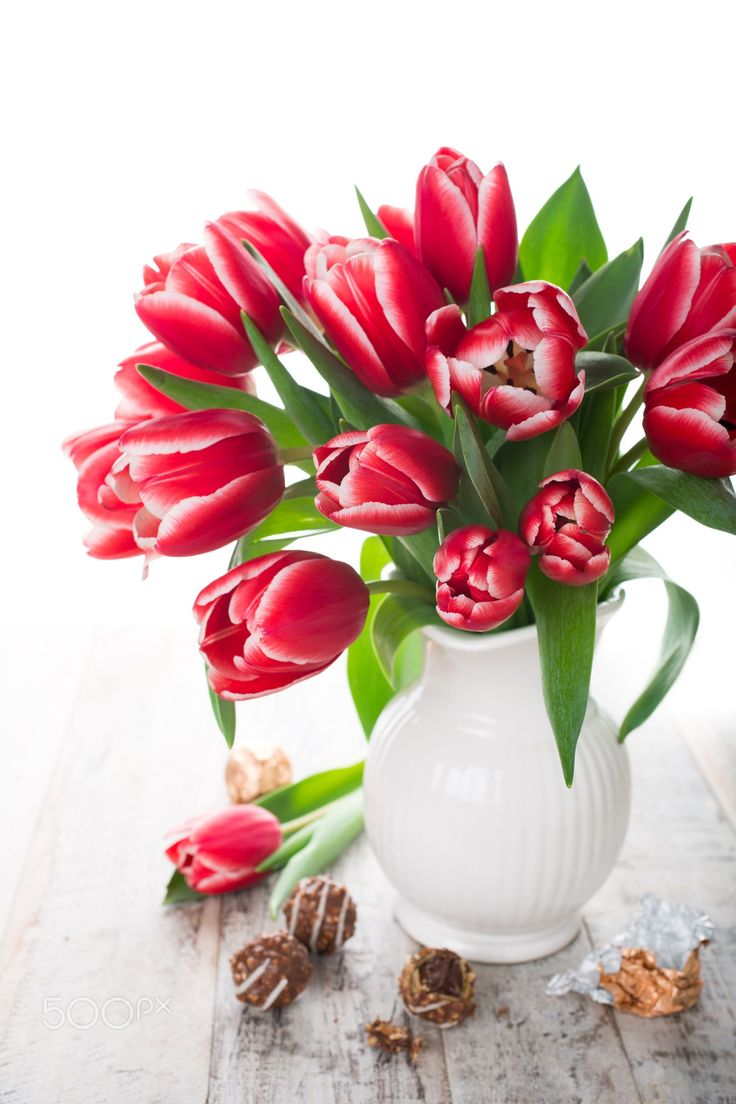Bouquet of pink tulips in vase on the white background - Bouquet of pink tulips in vase and chocolate candies on the white background with copy space for text. Valentine's and Mothers Day concept.