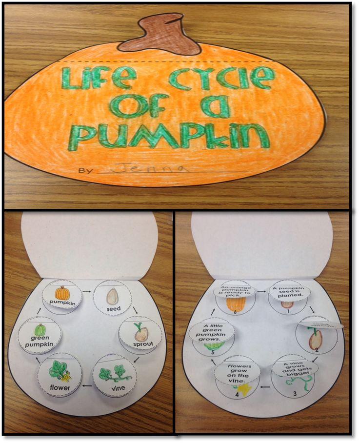Life Cycle of a Pumpkin Interactive Activity $1.00